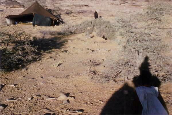 Zelt im Adrar