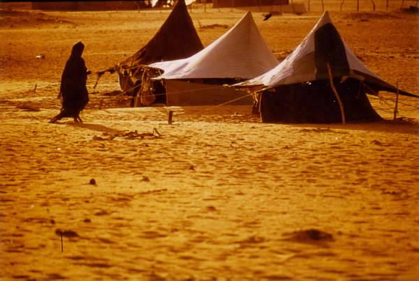 3 Zelte in Südmauretanien